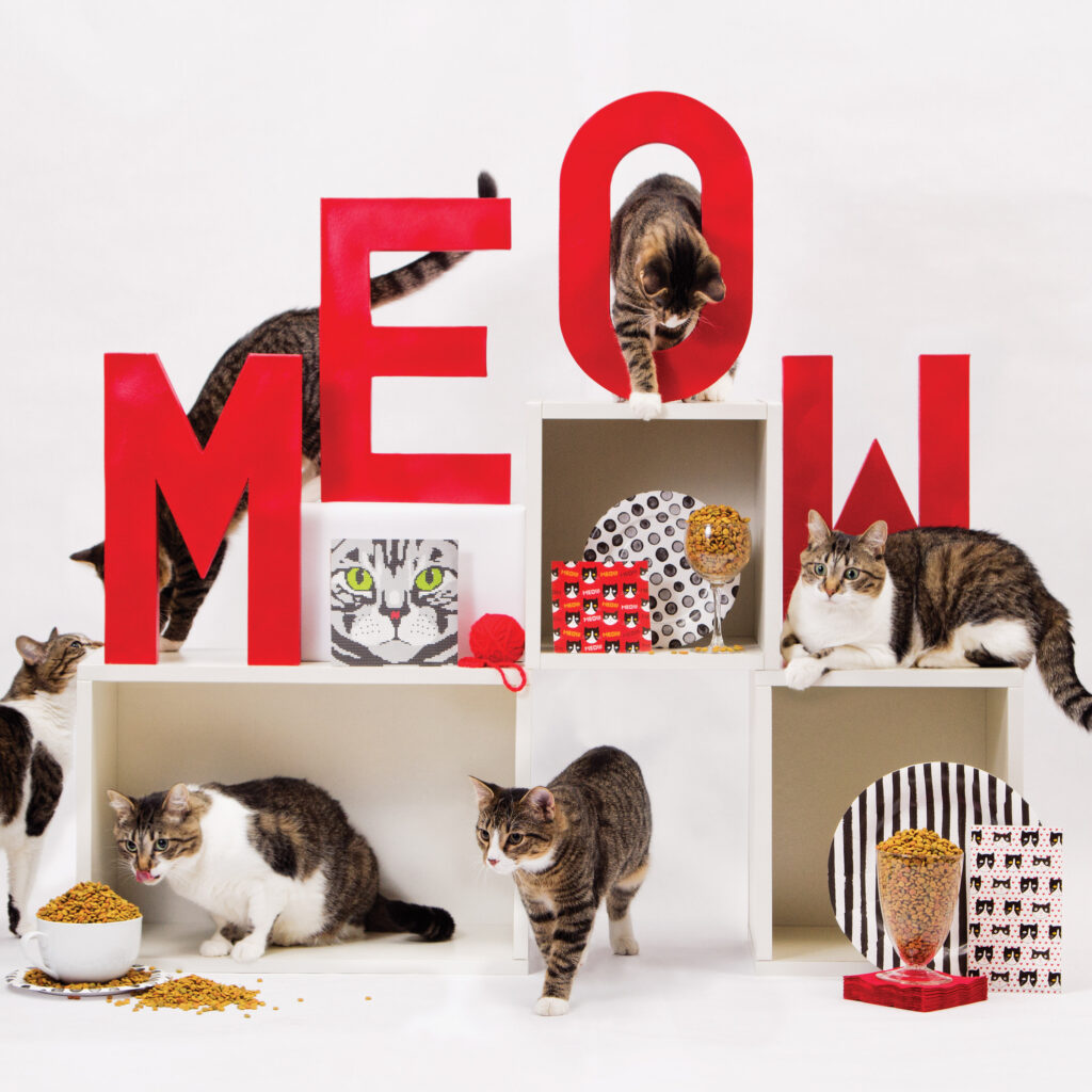 cats hoping on shelving with big red block letters spelling meow with cat napkins and plates on display