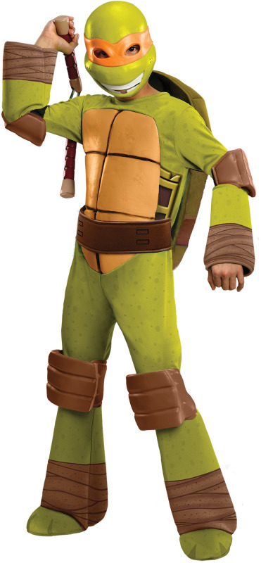 kid in teenage mutant ninja turtle costume